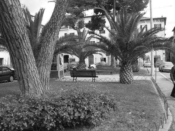 piazza_san_domenico1_20090922_1992318125