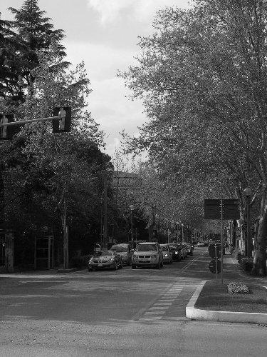 Viale Firenze